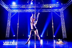 Survivor Pole Competition 2017